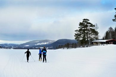 image-center-ski